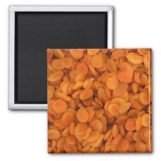 Dried Apricots Magnet