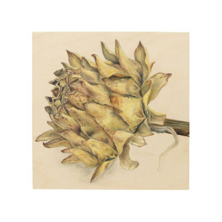 Dried artichoke globe watercolor art wood print