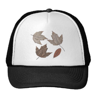 Dried Autumn Leaves Hats