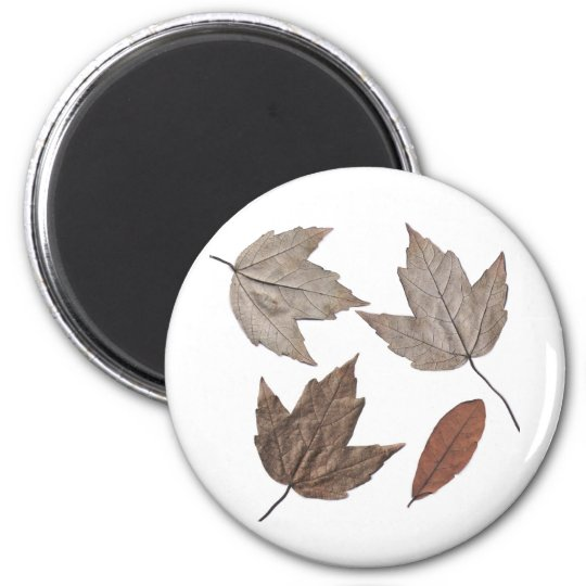 Dried Autumn Leaves Magnet