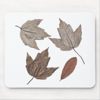 Dried Autumn Leaves Mouse Pad