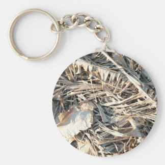 Dried Banana tree fronds background Key Chains