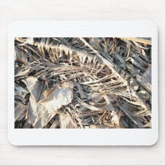 Dried Banana tree fronds background Mousepad
