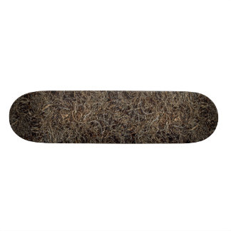 Dried beach vegetation, Trinidad Skate Board Deck