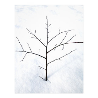 "Dried branch lonely tree on a snowy landscape 8.5"" x 11"" flyer"