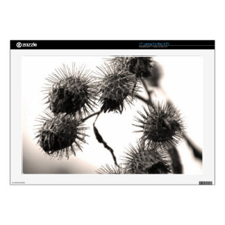 Dried burdock decal for laptop