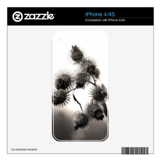 Dried burdock skins for iPhone 4