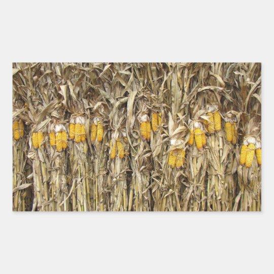 Corn Stalk Decoration Ideas: Dried Corn Stalk Decorations Rectangular Sticker