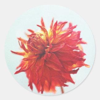 Dried Dahlia Classic Round Sticker