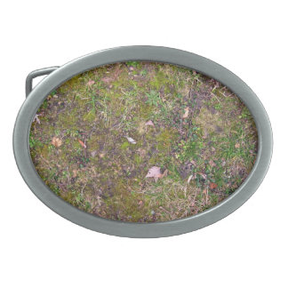 Dried Fallen Leaves on Grass Ground - Completely S Oval Belt Buckle