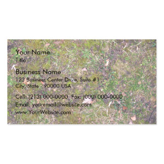 Dried Fallen Leaves on Grass Ground - Completely S Business Card