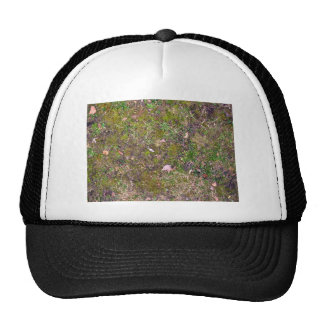 Dried Fallen Leaves on Grass Ground - Completely S Mesh Hat