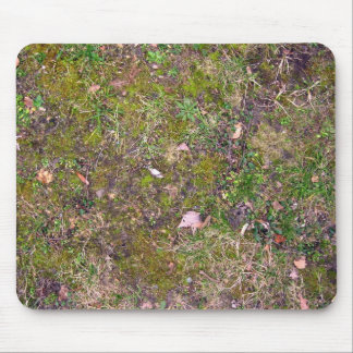Dried Fallen Leaves on Grass Ground - Completely S Mouse Pad