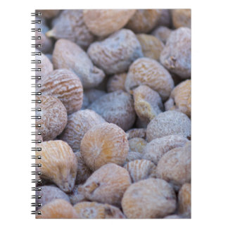 dried figs notebook