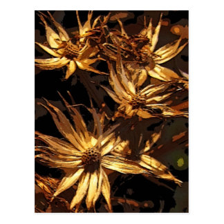 Dried Flower Abstract Postcard