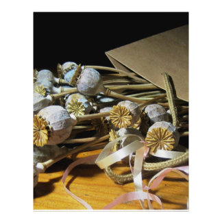 Dried Flower Poppy Pods Flyer