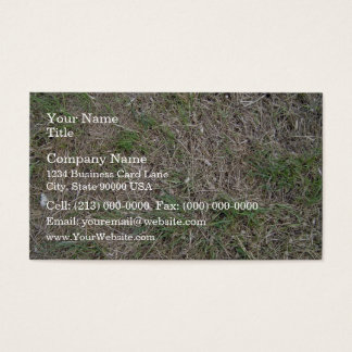 Dried grass texture business card