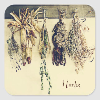 dried herbs rustic country still life square sticker