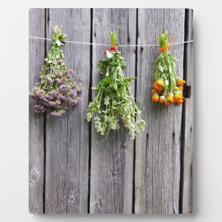 dried herbs wooden vintage grey wall display plaques