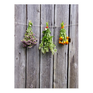 dried herbs wooden vintage grey wall postcard