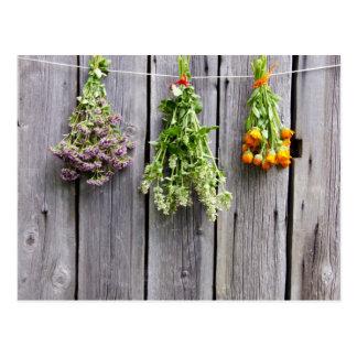 dried herbs wooden vintage grey wall postcard