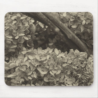 Dried Hydrangea in a sepia tone Mouse Pad