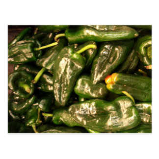 Dried Jalapeno Peppers Postcard