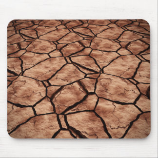 Dried Lake Bed Mouse Pad