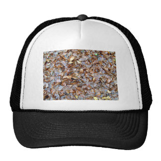 Dried leaves texture mesh hats