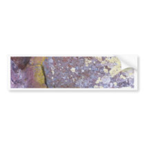 Dried lichen moss patterns on rustic granite bumper sticker