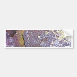Dried lichen moss patterns on rustic granite bumper sticker