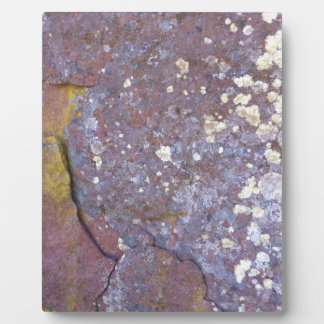 Dried lichen moss patterns on rustic granite photo plaques