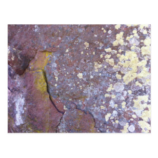 Dried lichen moss patterns on rustic granite postcard