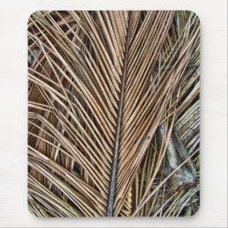 Dried Palm Fronds Mouse Pad