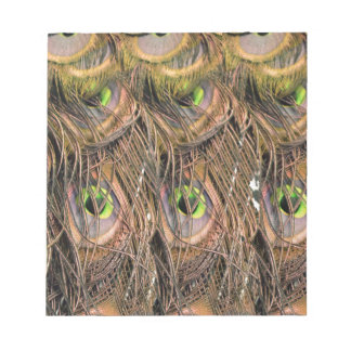 Dried Peafowl Feathers Notepad