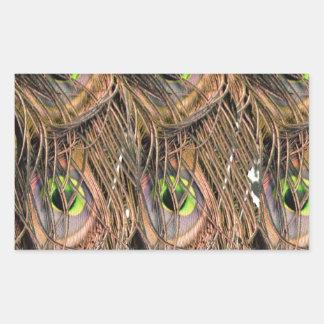 Dried Peafowl Feathers Rectangular Sticker