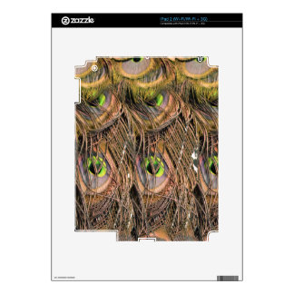 Dried Peafowl Feathers Skin For The iPad 2