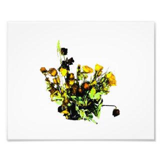 Dried Rose Arrangement yellow theme Photo Art