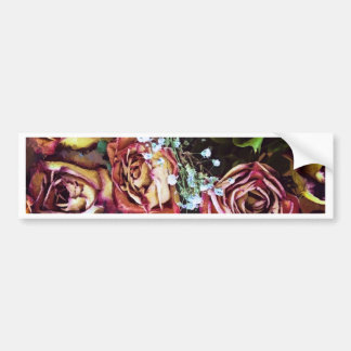 Dried Roses and Babies Breath Bumper Sticker