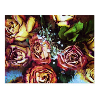 Dried Roses and Babies Breath Postcard