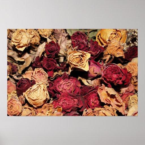 Dried roses print