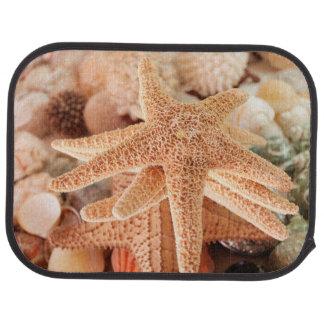 Dried sea stars sold as souvenirs 2 car floor mat