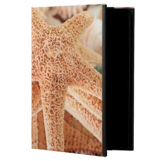Dried sea stars sold as souvenirs 2 cover for iPad air
