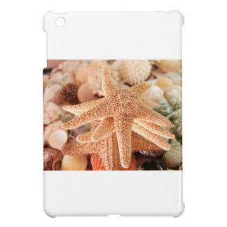 Dried sea stars sold as souvenirs 2 cover for the iPad mini