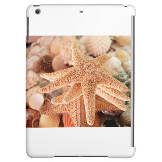 Dried sea stars sold as souvenirs 2 iPad air case