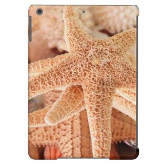 Dried sea stars sold as souvenirs 2 iPad air covers