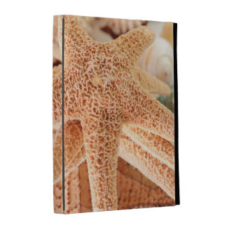 Dried sea stars sold as souvenirs 2 iPad cases