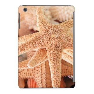 Dried sea stars sold as souvenirs 2 iPad mini cover