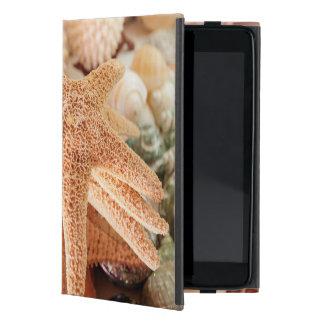 Dried sea stars sold as souvenirs 2 iPad mini covers