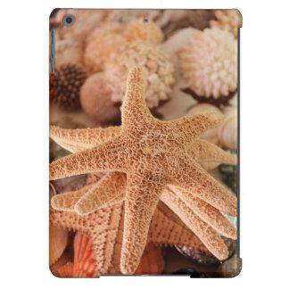 Dried sea stars sold as souvenirs iPad air cases